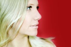 Business and beauty portrait Royalty Free Stock Images