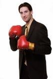 Business Boxer Royalty Free Stock Photos