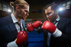 Business boxers Stock Photo