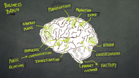 Business brain Stock Images