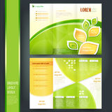 Business brochure template Stock Images