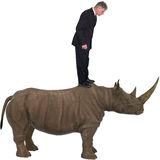 Business, Businessman, Rhino, Rhinoceros, Isolated Stock Photos