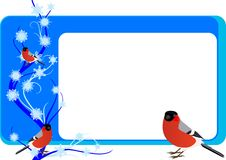 Business card with bullfinches Stock Image