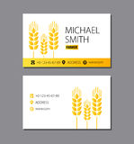 Business card of the farmer. Wheat. Eps 10 Royalty Free Stock Photo