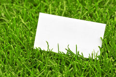 Business card in grass Stock Image