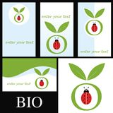 Business Card / Ladybug Royalty Free Stock Photography