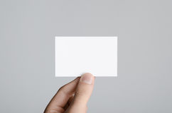 Business Card Mock-Up 85x55mm. Male hands holding a blank card on a gray background Royalty Free Stock Image