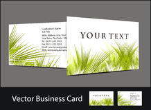 Business card set. Vector business card set , elements for design Stock Image