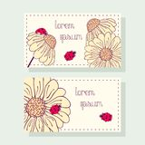 Business card set with ladybug and daisy Royalty Free Stock Photos