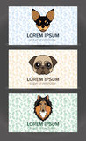 Business card templates set of a small veterinary clinic, dog br. Vector business card templates set of a small veterinary clinic, dog breeder, pet store Royalty Free Stock Images