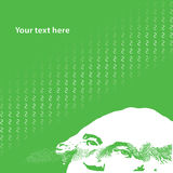 Business card. Vector. Green business card. Vector illustration vector illustration