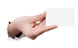 Business card in woman hand Royalty Free Stock Photo