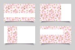 Business cards with pink flowers. Vector illustration. Royalty Free Stock Image
