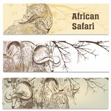 Business cards set in African safari style Stock Photos