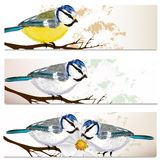 Business cards set with birds royalty free illustration