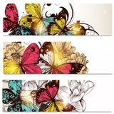 Business cards set with butterflies and  flowers  for design Stock Image