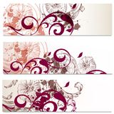 Business cards set in floral style Royalty Free Stock Photo