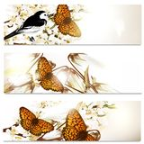 Business cards set in floral style with butterflies, bird and fl Stock Images