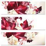 Business cards set in floral style with flowers Stock Images