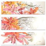 Business cards set in floral style with lily flowers Stock Photography