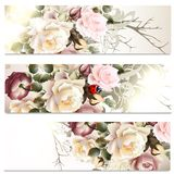 Business cards set in floral style with roses Royalty Free Stock Image