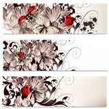 Business cards set with flowers Royalty Free Stock Photography
