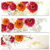 Business cards set with flowers Stock Photo