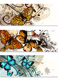 Business Cards Set With Butterflies And Floral Ornament Stock Photos