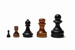 Business career growth. A line of five chess pawns of different sizes from the smallest to the left to the largest to the right as a symbol of business career Royalty Free Stock Images