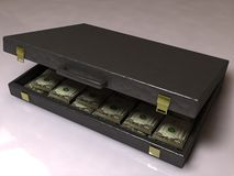 Business case with dollars Stock Photography