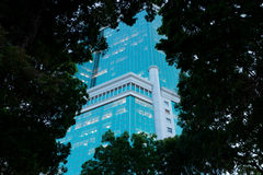 Business centre. Evening view through trees. Stock Image