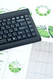 Business chart and keyboard Stock Image