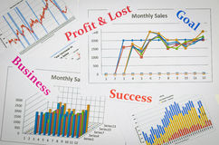 Business charts and graphs with world Royalty Free Stock Photo
