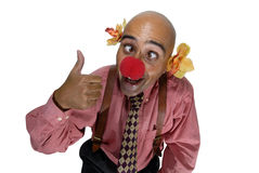 Business clown Royalty Free Stock Photography