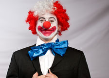 Business clown. Dressed for success ,clown wearing a suit , with a red nose on a white backround Stock Photo