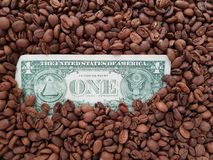 Business coffee, reverse side of one dollar bill with coffee beans background. Price and value of coffee, loads of coffee beans toasted, ingredient for drinks stock images