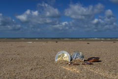 Business coins at holiday in the sand on the beach, North Sea Royalty Free Stock Photography