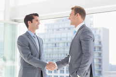 Business colleagues greeting each other Stock Images