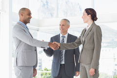 Business colleagues greeting each other Stock Photography