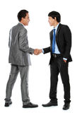 Business colleagues shaking hands Stock Photography