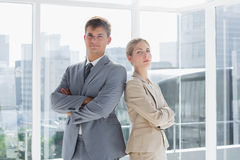 Business colleagues standing in their office Royalty Free Stock Image