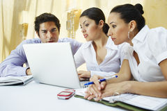 Business Colleagues Using Laptop Stock Photography