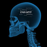 Business concept. X-ray of businessman head with handwritten business words in his mind (3D render stock illustration