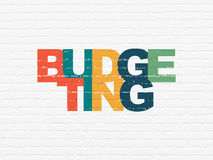 Business concept: Budgeting on wall background. Business concept: Painted multicolor text Budgeting on White Brick wall background, 3d render Stock Photo
