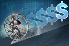 The business concept with businessman running on hamster wheel Royalty Free Stock Photos