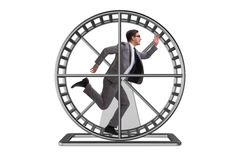 The business concept with businessman running on hamster wheel Royalty Free Stock Images