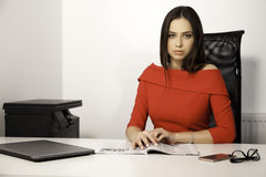 Business concept - businesswoman. Business concept - portrait of a beauty young adult attractive pretty brunette businesswoman in office Stock Photos