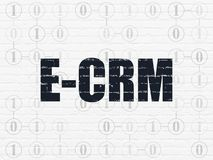 Business concept: E-CRM on wall background. Business concept: Painted black text E-CRM on White Brick wall background with Scheme Of Binary Code Stock Photos