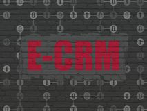 Business concept: E-CRM on wall background. Business concept: Painted red text E-CRM on Black Brick wall background with Scheme Of Binary Code Stock Photo