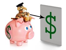 Business consultant. A piggy bank with a dollar sign and a mascot with a college hat on white background Royalty Free Stock Image